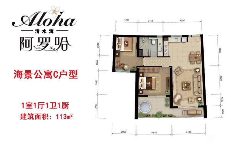 海景公寓C户型